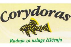 ciscstippstrcoryda_logo