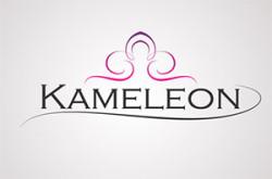 salazvncanjkamelleon_logo
