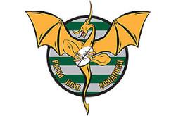 ragbiklubvozdrgons_logo