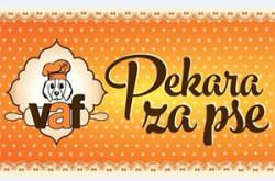 pkrzpsevafnpnsad_logo