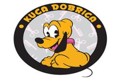 1481135407_salnkucadbricacu_logo