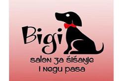 1481543511_ssisannegpbigins_logo