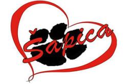 1485605134_panspsesapicainns_logo