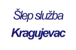 1486393415_slepsluukragujvc_logo