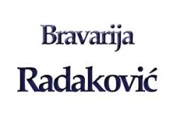1489663997_bravvrijradakvs_logo
