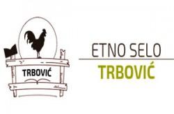 1500990236_etselotrbovvicgm_logo