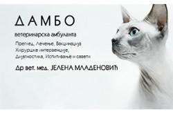 1505822287_vetrnabdambob_logo
