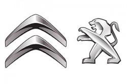1516815655_poldelvcitrpezoo_logo