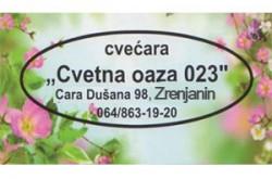 1524158296_cvcvetnoazazrenj_logo