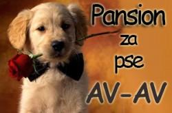1524242802_psionzapseavavbg_logo