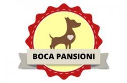 1542028203_panpbocaaobrn_logo