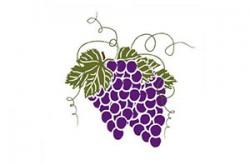 1542607772_vinrstojanvicsr_logo